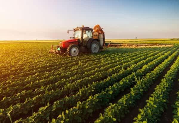 Produtos nortene indispensáveis para a fazenda
