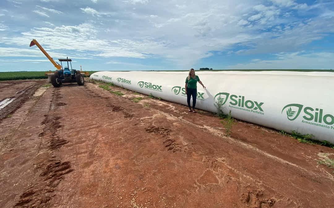 Mulheres impulsionam comercialização de silos-bolsas no Brasil